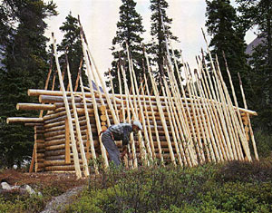 Дик Proenneke собранных прямыми стволами деревьев на крыше
